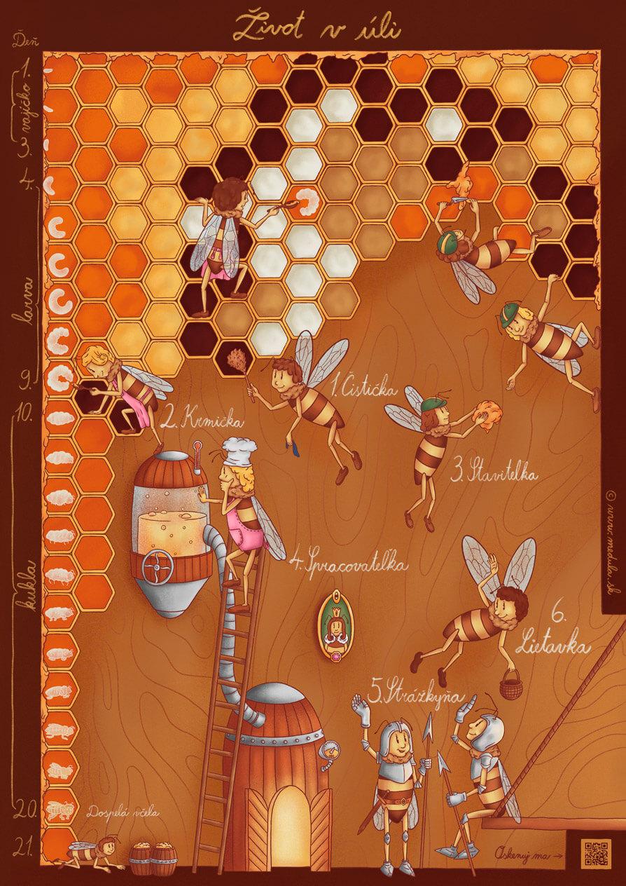 Život včiel v úli
